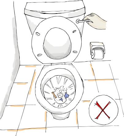 Do not Flush waste