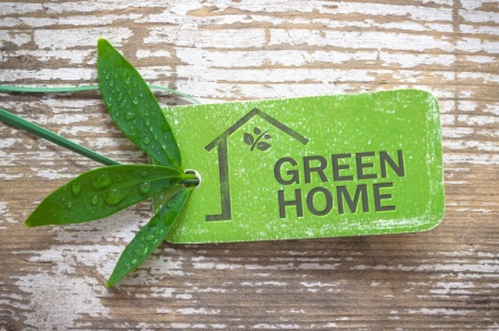 Green home eco sustainable