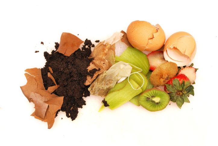 composting kitchen waste egg shell tea coffee