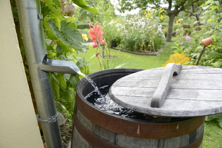 rainwater harvesting wood barrel