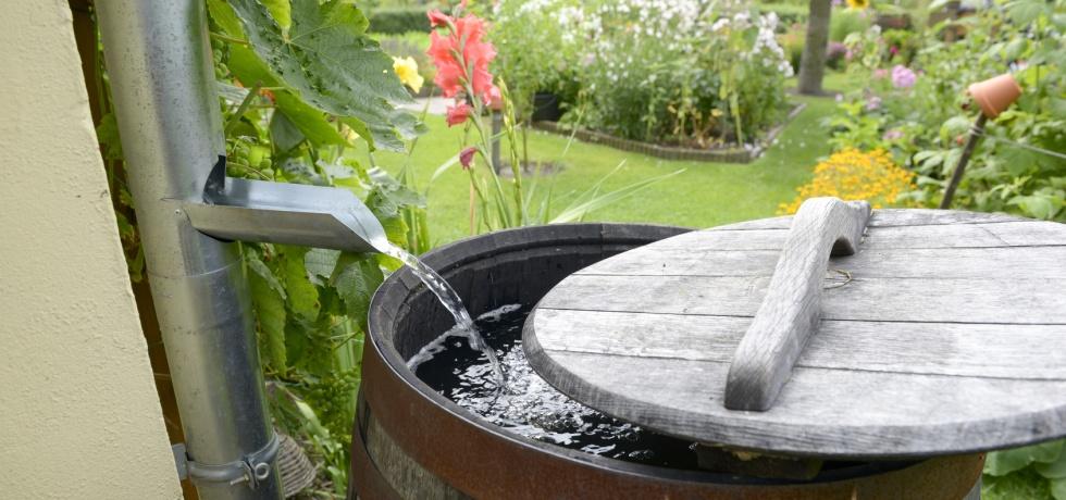 rainwater harvesting wood barrel