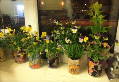 gardening cups home kitchen flowers