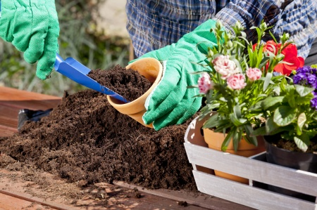 gardening home tools trowel scoop gloves