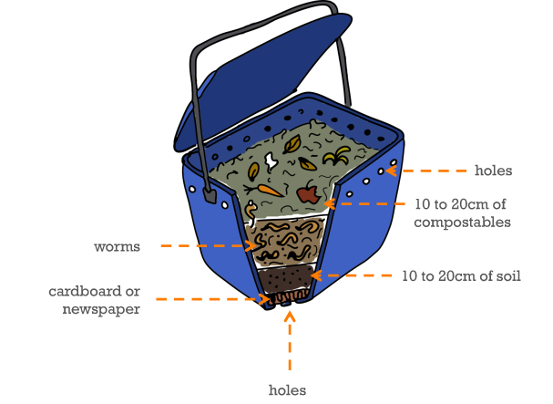 sketch of how to make a wormery with layers of cardboard, soil, worms and compostable material