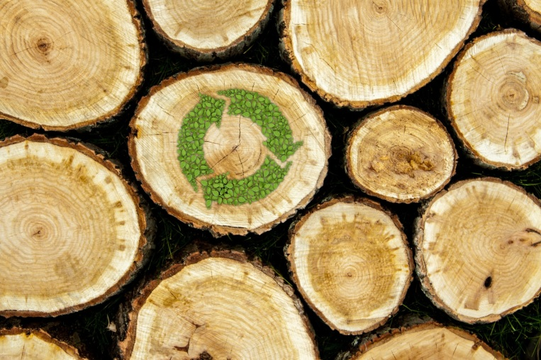Stacked Logs with green plant recycle symbol, natural wood background