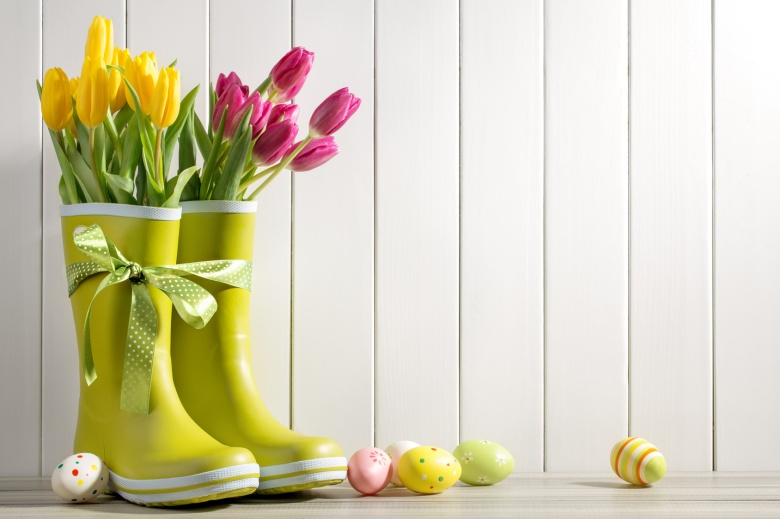 Rain boots with ribbon, fresh tulips and easter eggs on wood background
