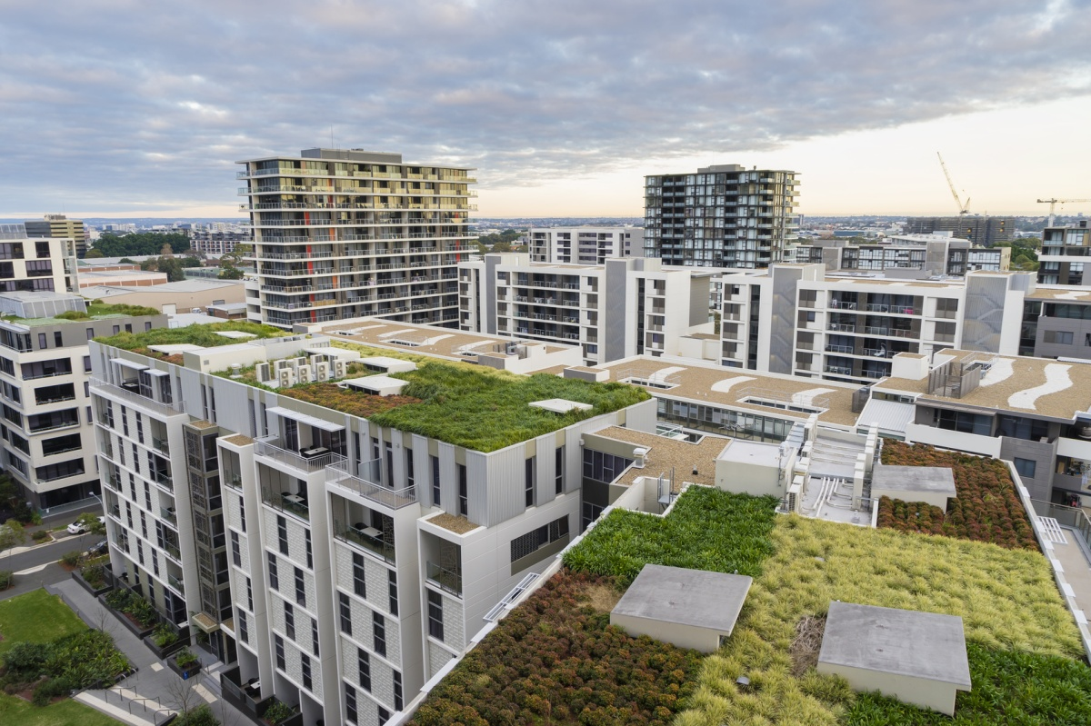 Green roofs and their benefits