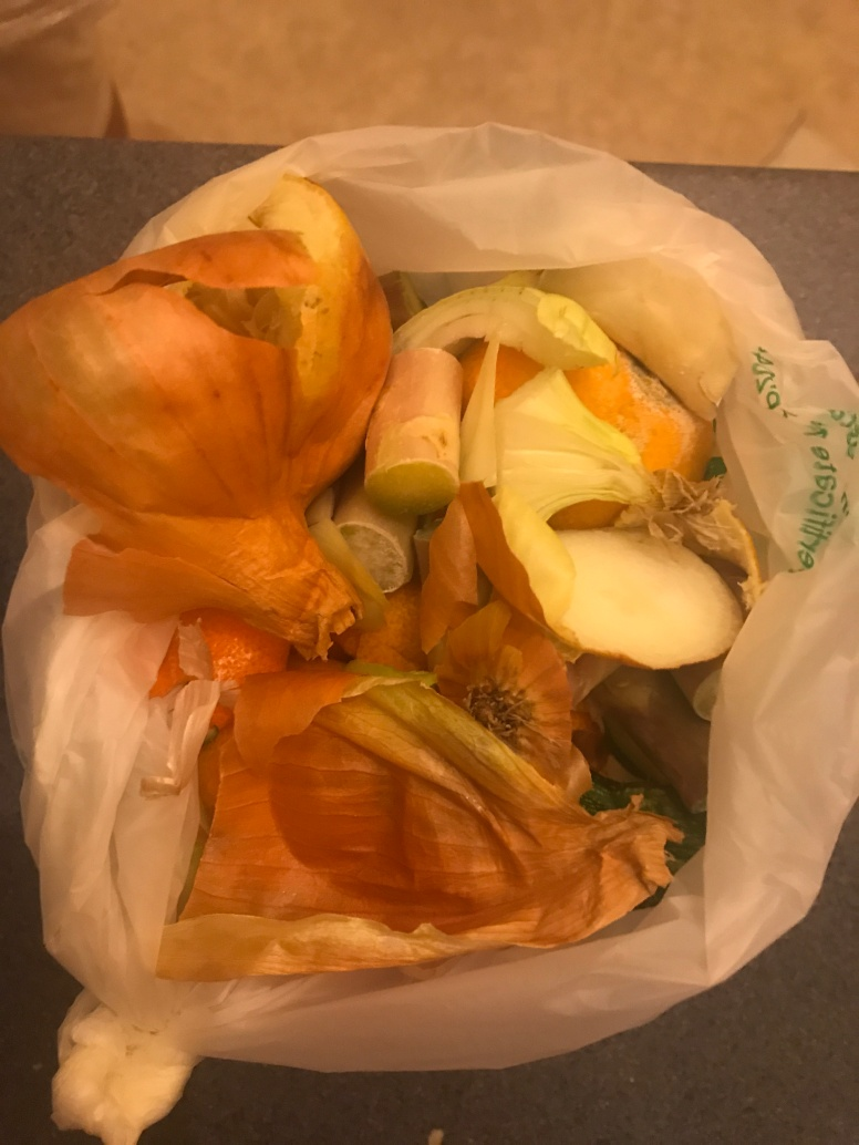 I reused a plastic fruit packaging to collect food waste