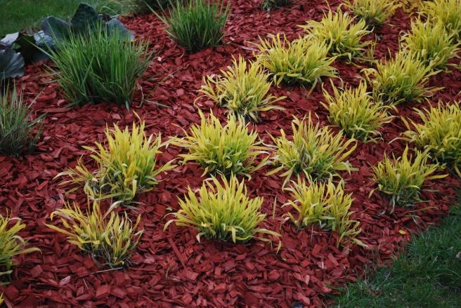 Mulches help retain moisture in the soil