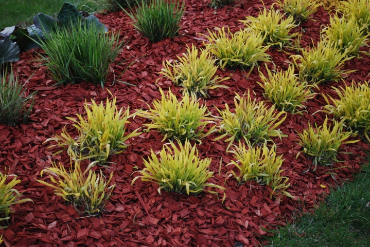 Mulches help retain moisture in the soil