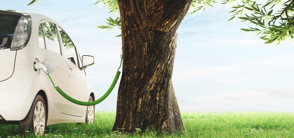 Car charging on a tree on a green field with blue sky, sustainability concept, electrofuels