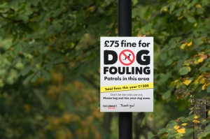 no dog fouling sign in a park with a tree on the background
