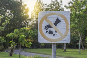no littering sign in a park full of trees